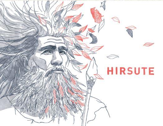Hirsute Rouge, 2018 Cabernet Franc, Merlot Vin du Périgord ParLes Équilibristes